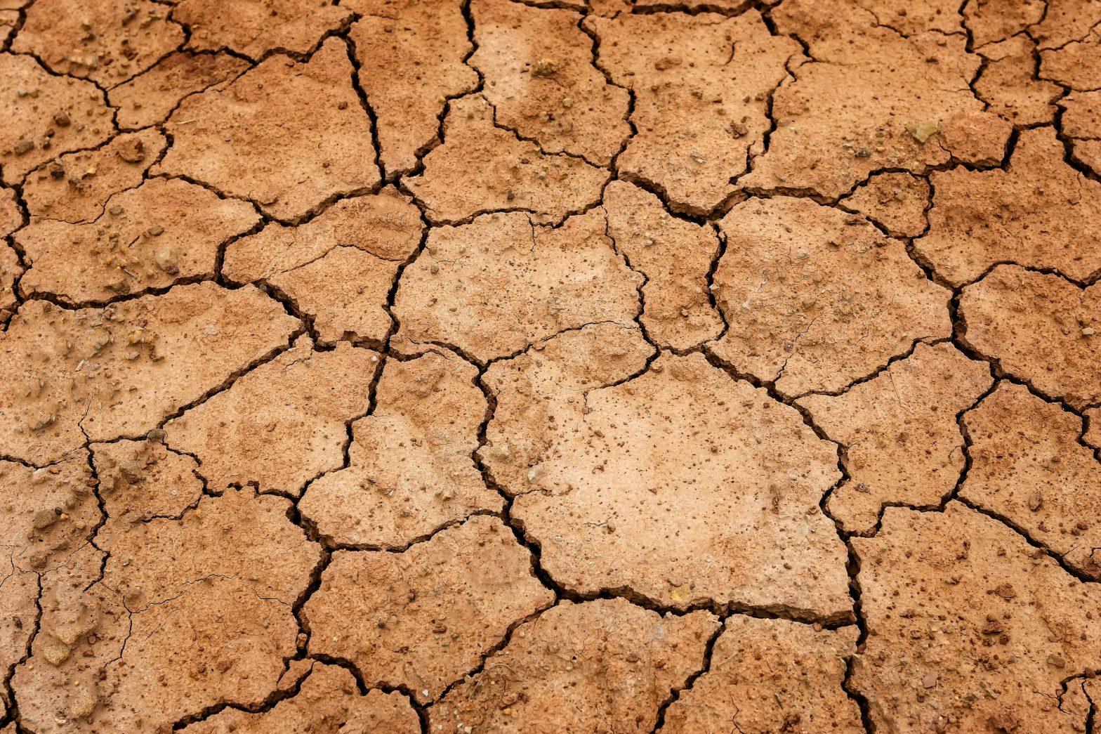 Erde Dürre Boden