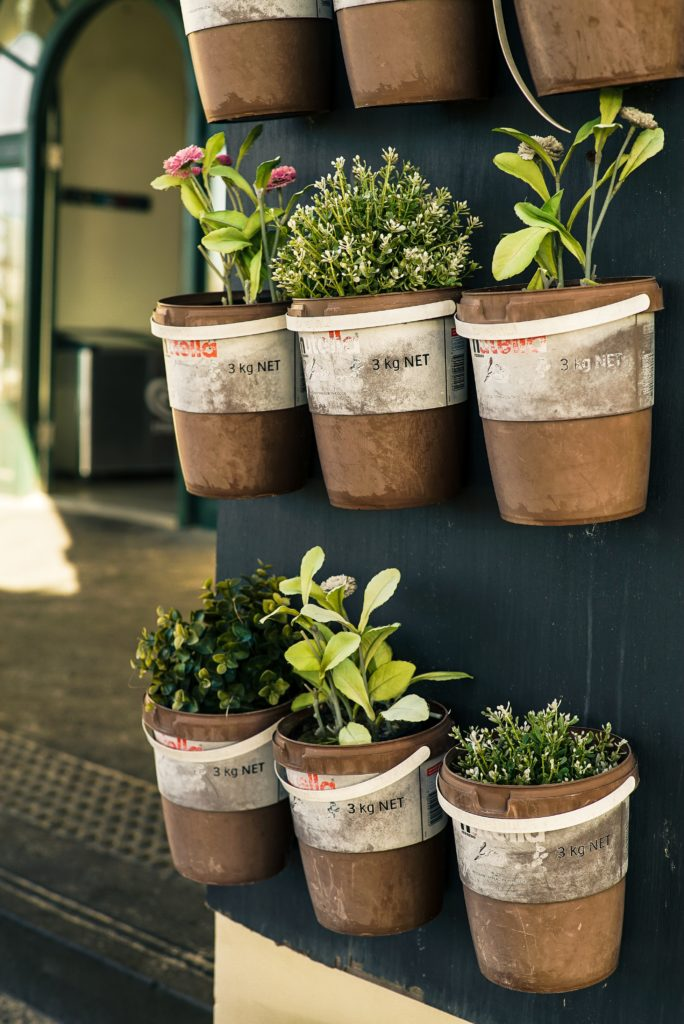 hanging pots with herbs